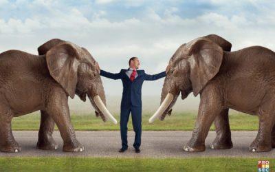 La médiation en entreprise : un levier de performance globale